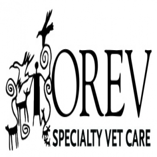 best-veterinarians-portland-or-usa