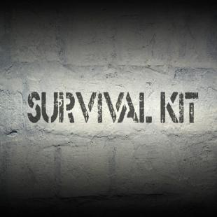 survival-zone