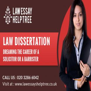 law-essay-help-tree