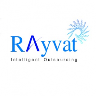 rayvatengineering