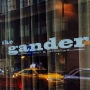 the-gander