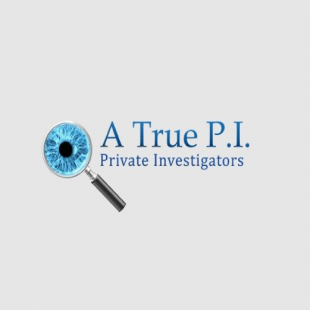 a-true-p-i-private-inves