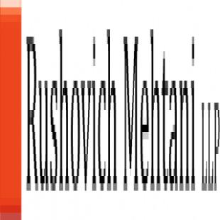 rushovich-mehtani-llp