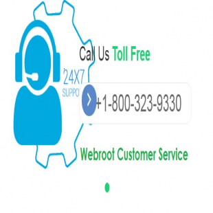 webroot-customer-service