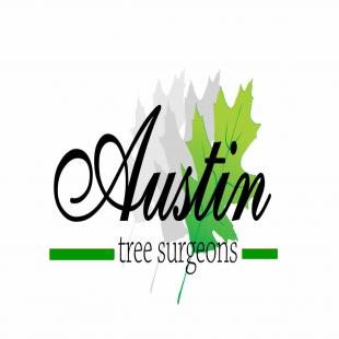 austin-tree-surgeons-ZVY