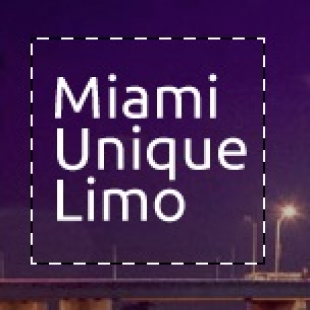 miami-unique-limo