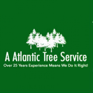 a-atlantic-tree-service
