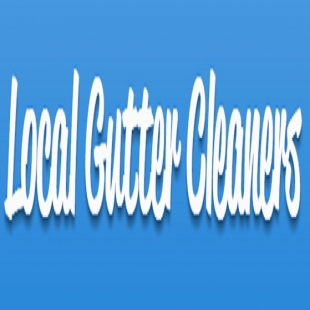 local-gutter-cleaners