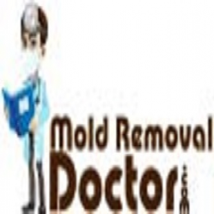 mold-removal-doctor-hous