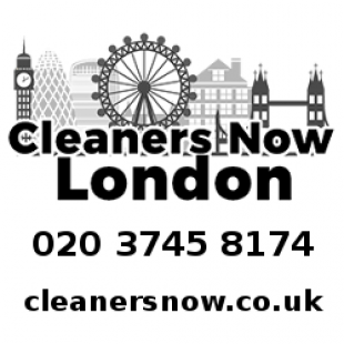 cleaners-now