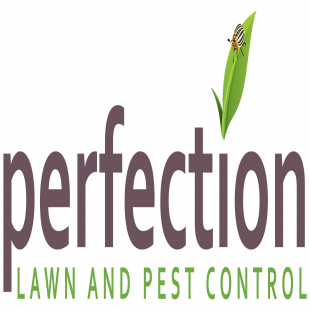 best-pest-control-grand-rapids-mi-usa