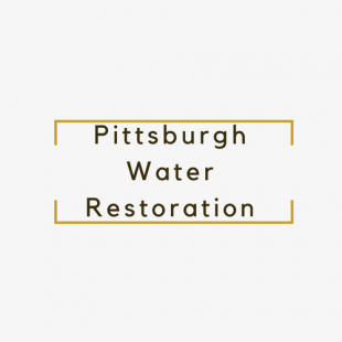 best-const-mold-water-damage-pittsburgh-pa-usa