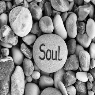 soul-reconnect