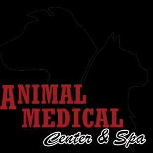 animal-medical-center-and-spa