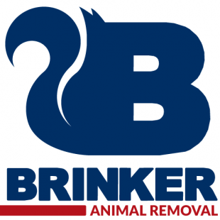 best-animal-wildlife-removal-dallas-tx-usa