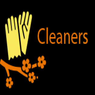 the-love-cleaners