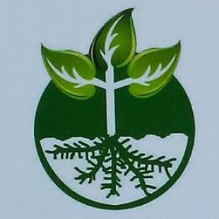 najera-lawn-service
