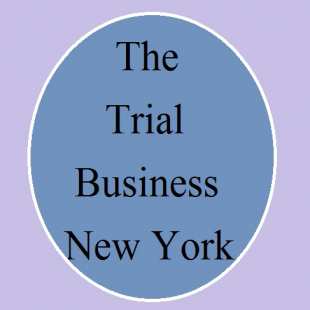 the-trial-business-ny