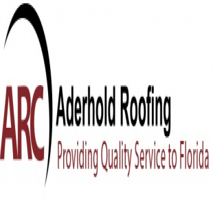 best-roof-cleaning-stain-removal-tampa-fl-usa