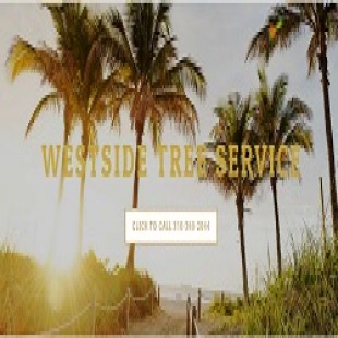 best-tree-service-beverly-hills-ca-usa