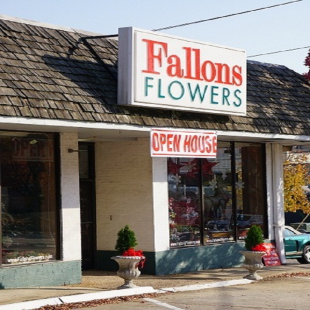 fallon-s-flowers