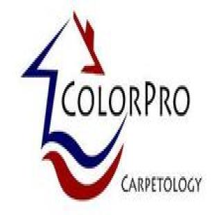 colorpro-carpetology