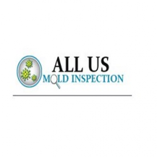 best-mold-mildew-inspectionremovalremediation-denver-co-usa