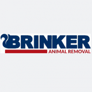 best-animal-wildlife-removal-austin-tx-usa
