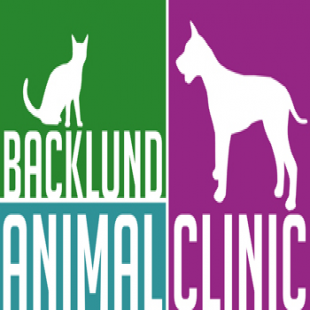 best-veterinarians-omaha-ne-usa