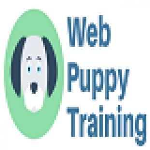 web-puppy-training