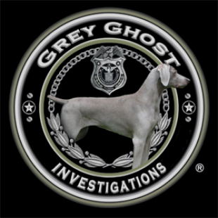 grey-ghost-investigations