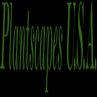 plantscapes-usa