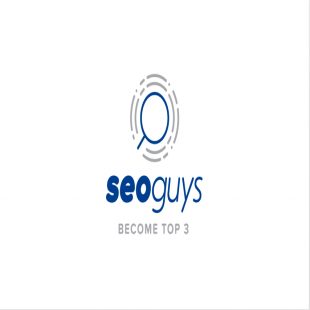 seo-guys-houston