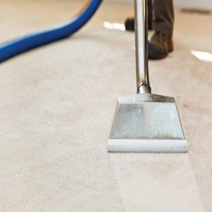 warren-carpet-cleaning