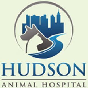 hudson-animal-hospital