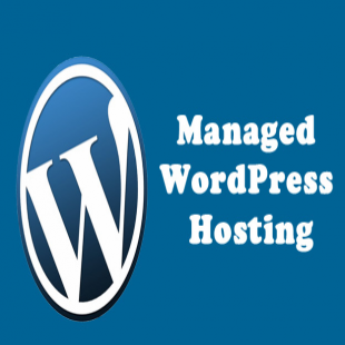 skt-themes-hosting