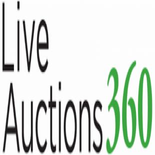 live-auctions-360