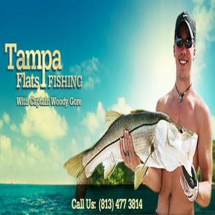best-fishing-bait-tampa-fl-usa