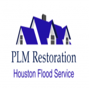 plm-restoration