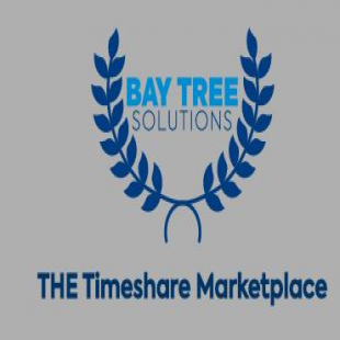 bay-tree-solutions-inc