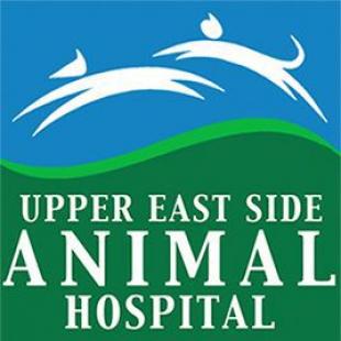 upper-east-side-hospital