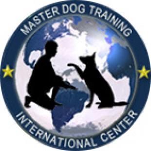 master-dog-training