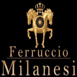 ferruccio-milanesi-vwD
