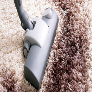 maupin-carpet-care