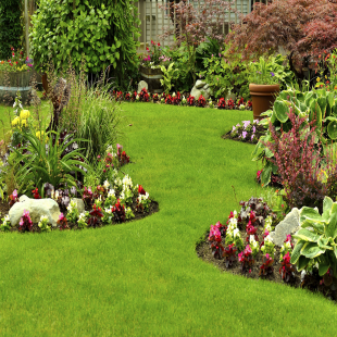 elite-garden-and-landscap