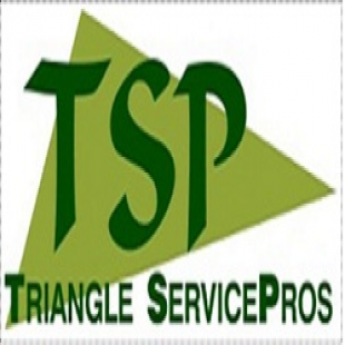 triangle-servicepros