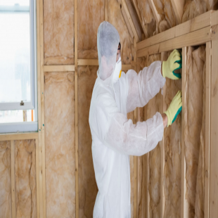 best-mold-mildew-inspection-indianapolis-in-usa