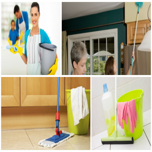 thea-s-cleaning-services