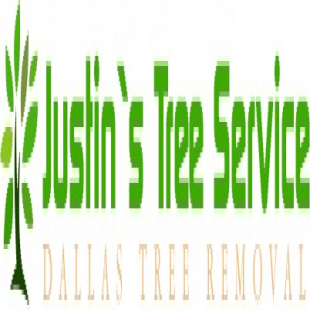 best-tree-service-dallas-tx-usa