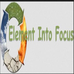 element-into-focus
